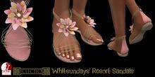 Eclectica 'Whitsundays' Resort Sandals-frangipani pink