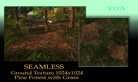 Seamless Ground Texture Pine Forest   1024 TGA