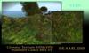 Seamless Ground Texture Summer Grass Mix 1024 TGA