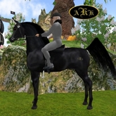 AKK 09XL Black Arabian