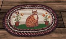 Cat Rug - High Resolution Texture