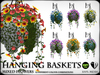 Hanging Baskets - Mixed Flowers 1