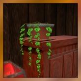 House Ivy Plant. Mesh