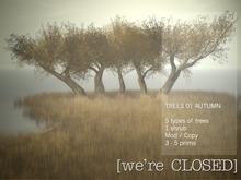 [we're CLOSED] trees 01 autumn - copy