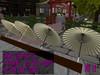 Wagasa (Japanese Umbrella) Creative Set