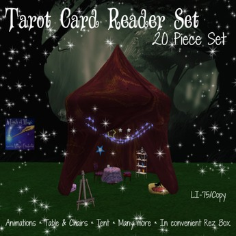 The Tarot Reader Gypsy Tent (Boxed)
