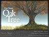 Skye four season oak 3