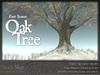 Skye four season oak 5