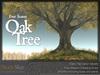 Skye four season oak 4