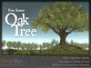 Skye four season oak 6