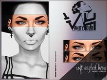 VHC32: VANITY HOUR - S O F T  A N G L E D B R O W S