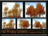 FALL PRIVACY SCREENS ~ 5 DIFFERENT VERSION IN 3 SIZES
