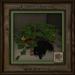 Feline Treasures - Pumpkin Patch - Black