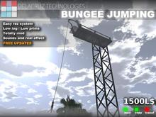 Bungee Jumping - Delacruz Technologies