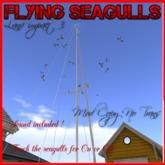 AL - Flying Seagulls MESH