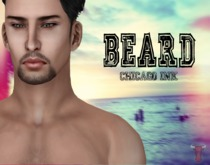 .Chicago Ink. - Beard Type E