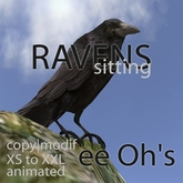 RAVENS SITTING deco | sculpt | animated