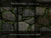 12 Seamless Mossy Large Stone Boulder Wall Textures High Resolution