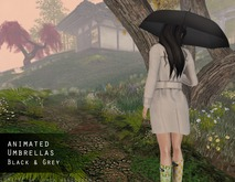 Lumiere Umbrellas