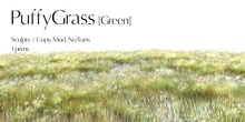 *alirium* PuffyGrass [Green]