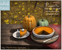 {what next}Pumpkin Pie Decor (boxed)