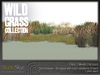 Wild grass collection 3