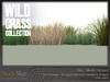 Wild grass collection 7