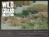 Wild grass collection 6