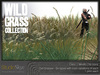Wild grass collection 8