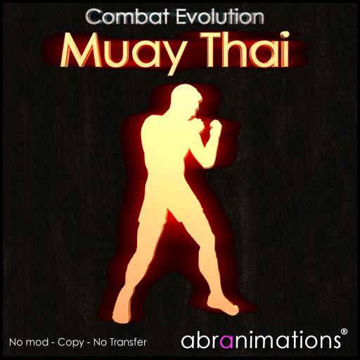 * Muay Thai HUD C.E.v4 - Abranimations *