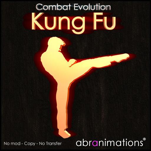 Kung Fu HUD C.E. v4 - Abranimations