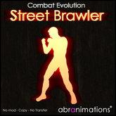 Street Brawler FIghting HUD ce v4.1 - Abranimations