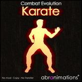 Karate HUD v4.1 - Abranimations