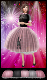 ~~Glitter Girls~~ Sock Hop Box