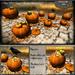 Special Offer Halloween 40%OFF !! Follow US !! Autumn Pumpkins collection COPY version