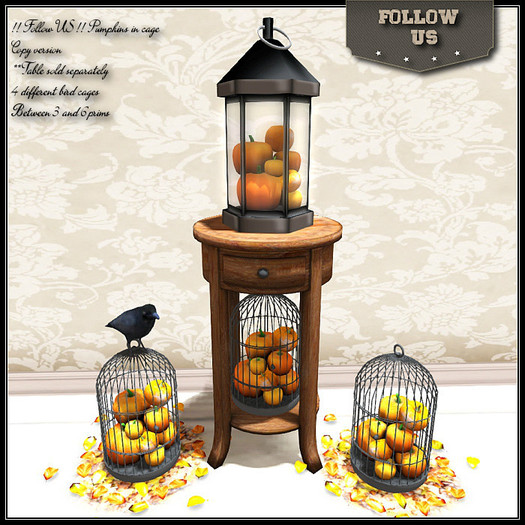 Special Offer Halloween 40%OFF !! Follow US !! Autumn Pumpkins in cage collection COPY