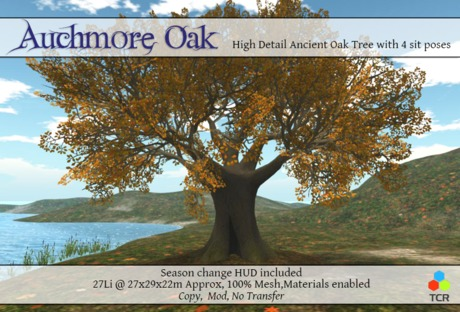Auchmore Oak High detail mesh Oak tree with sit poses