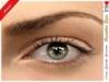 * Inkheart * - Sensitive Eyes - Acacia  (3 Sizes)