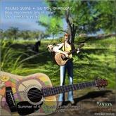 -Hanaya- Summer of 69 Classical Guitar [mesh]