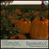 {RW} Mesh Pumpkin Patches & Vines Set