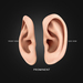 Ear display boards prominent