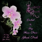 NSP Orchid & Ivy Hair Piece Ghost Pink boxed