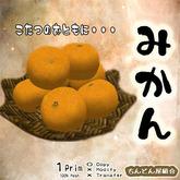 みかん / Satsuma mandarin / orange / Mikan