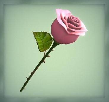 [AG] Rose - Pink Rose