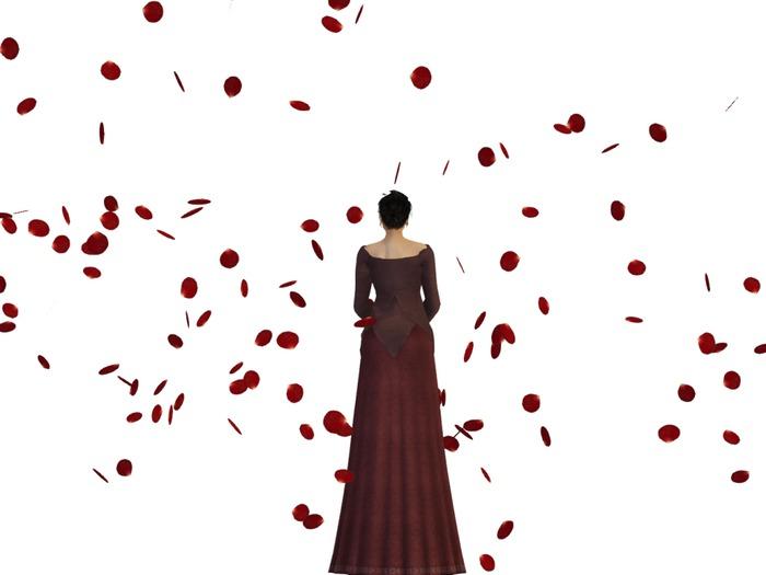 Free Mesh Floating Rose Petals