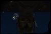 Firefliesad1 001