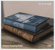 LISP - Mesh - Victoire Pile of Reading Books - 1li