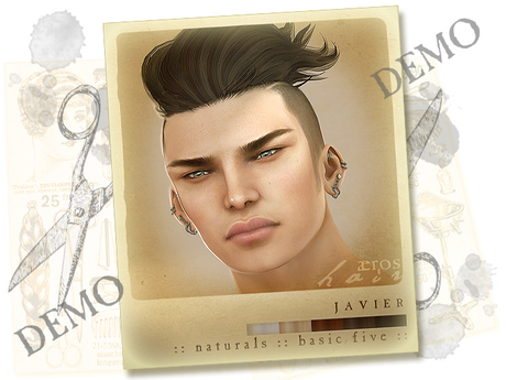 Aeros Hair Javier :: Naturals :: basic five :: demo