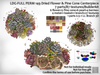 LDG-FULL PERM 149 Dried Flower & Pine Cone Centerpiece/7 parts/87 textures/Builderkit