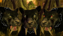 Black Avatar LARL Saber Tooth Tiger * Mesh *